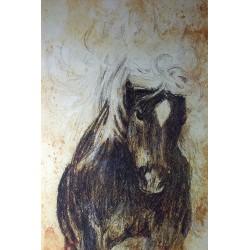 """Leinwand """"Shetland Pony"""""""