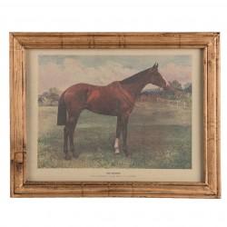 Gerahmtes Vintage Pferdebild
