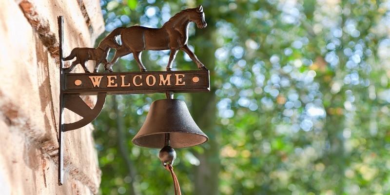 Exklusive Pferdegeschenke: Hof & Garten